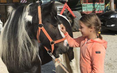 Therapeutisches Reiten: Wie der Kontakt zu Pferden Kindern helfen kann