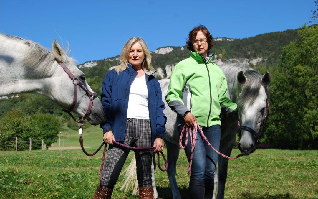 USP – Pferd: Der perfekte Trainer für Führungskräfte