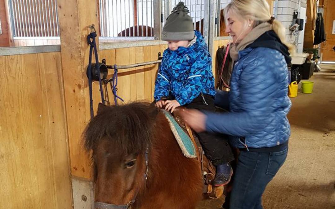 Was Kinder und Jugendliche durch den Umgang mit Pferden lernen können