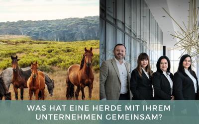 Führungskräftetraining mit Pferden: Was hat eine Herde mit Ihrem Unternehmen gemeinsam?